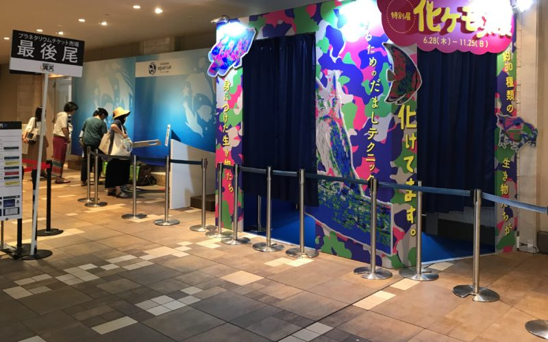 サンシャイン水族館の特別展会場で開催した化ケモノ展の入口
