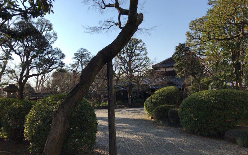 正門から見た旧朝倉家住宅