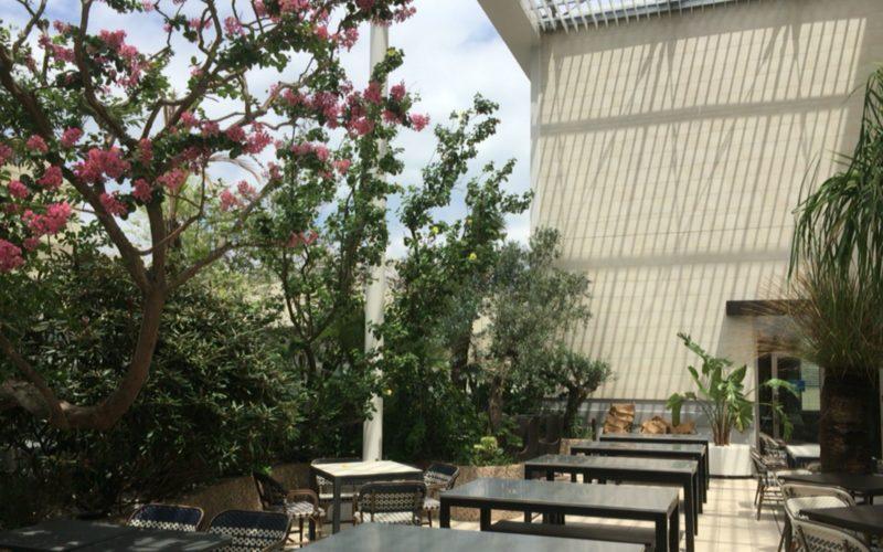 アトレ恵比寿西館屋上のアトレ空中花園に咲く花と座席