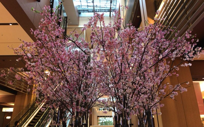 ミッドタウンブロッサムで東京ミッドタウンのガレリア1Fに展示されたツリーシャワー