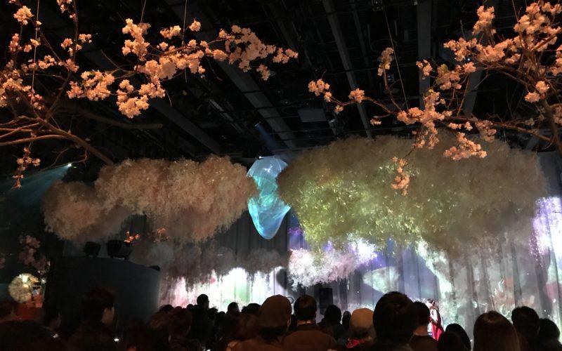 フラワーズ バイ ネイキッド2018 輪舞曲で上演された音楽アーティストのスペシャルライブ