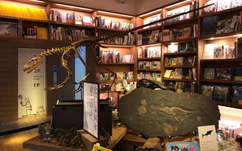 代官山蔦屋書店1号館1Fで開催したイベント「化石は何を語るのか」の会場内