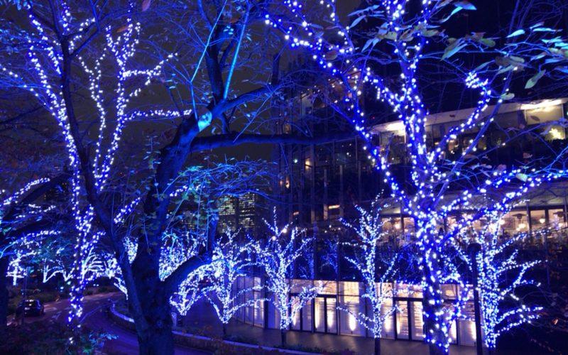 ミッドタウンクリスマスでミッドタウン・ガーデンに点灯したスターライトロード