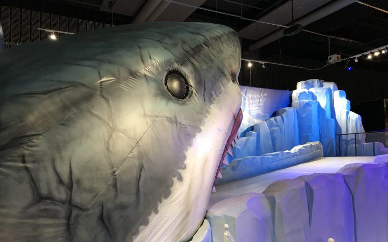 日本科学未来館で開催した企画展 MOVE 生きものになれる展のペンギンコーナー「サバイバル・オーシャン」