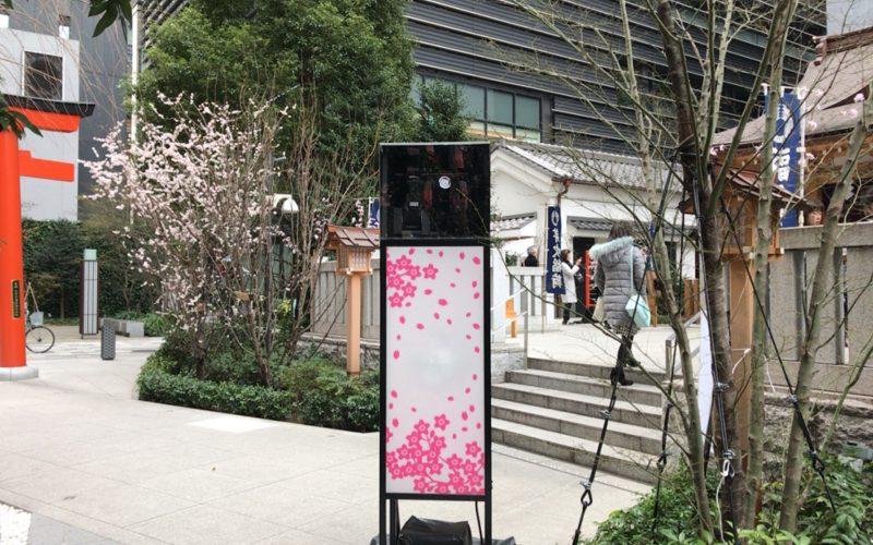 福徳の森にあった桜ライトアップの機器