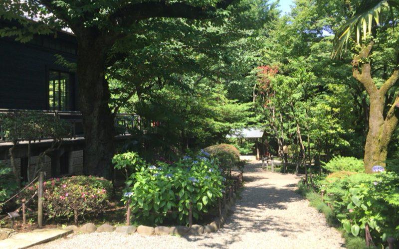乃木神社に隣接する旧乃木邸の庭