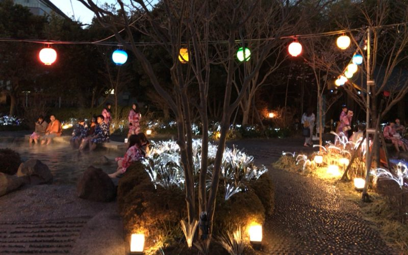 FIREWORKS BY NAKEDー大江戸温泉 花の宴ーの光ファイバーのフラワーイルミネーション