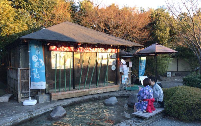大江戸温泉物語お台場の足湯にあるフィッシュセラピー