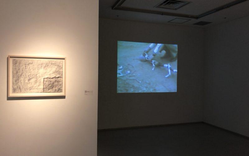 渋谷ヒカリエ8FのCUBE 1,2,3で開催した菅木志雄 70年代、80年代の仕事からの会場内で上映していた映像作品
