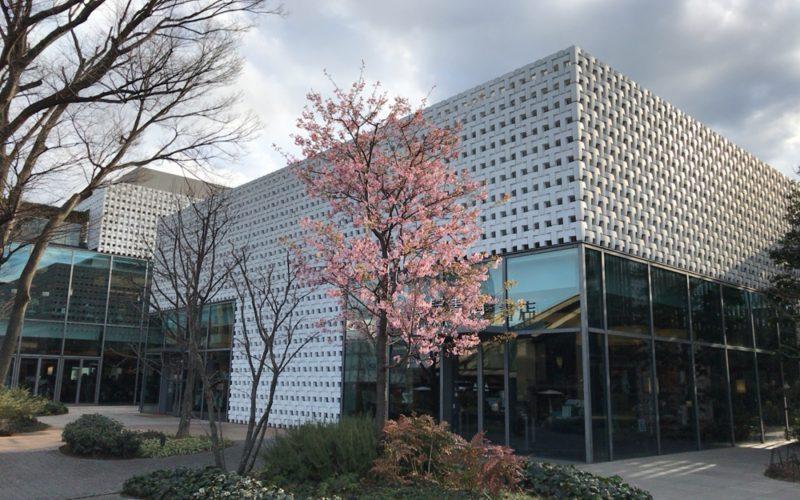代官山蔦屋書店の建物と桜の木