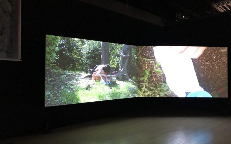 恵比寿映像祭で東京都写真美術館2Fで上映した青柳菜摘さんの作品