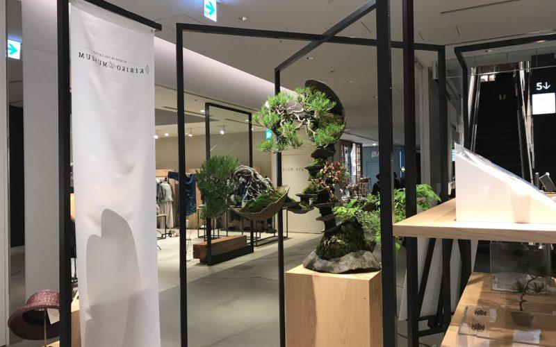 東急プラザ銀座で開催していたあてやかモノガタリ。BONSAI Meets JAPAN, Againの展示作品
