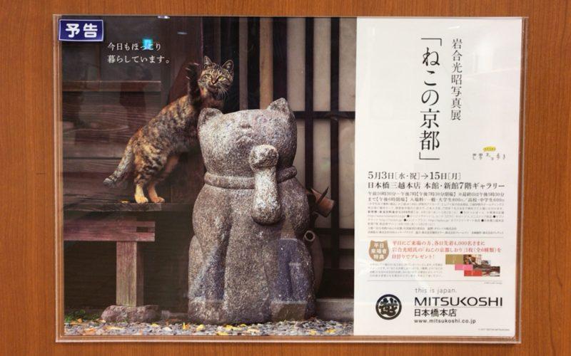 日本橋三越新館7Fに貼られていた岩合光昭写真展のポスター