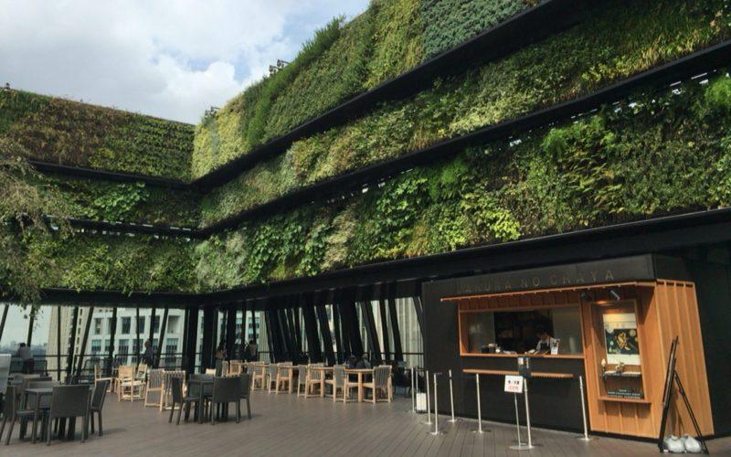 東急プラザ銀座の屋上 キリコテラスのグリーンサイド