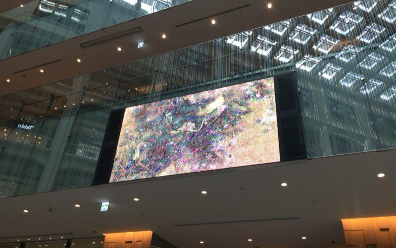 KITTE丸の内1Fアトリウムで上映されているチームラボのデジタルアート作品「Time-blossoming Flowers/時に咲く花」