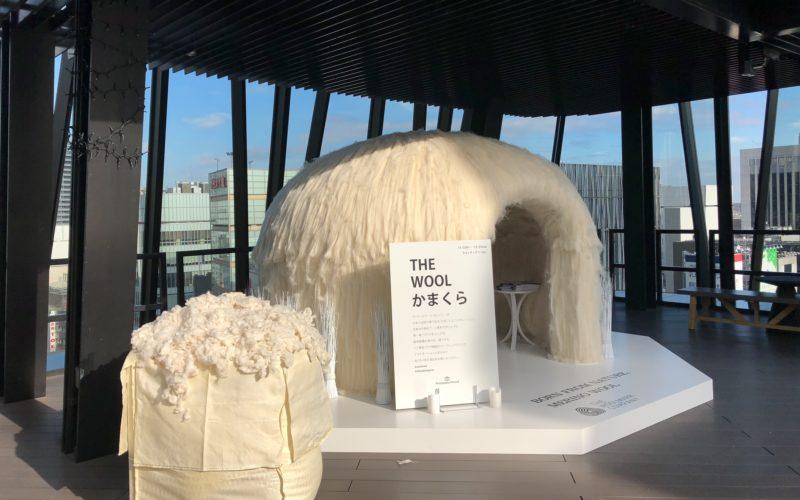 東急プラザ銀座屋上キリコテラスのグリーンサイドに展示していたウールでできたイルミネーションかまくら