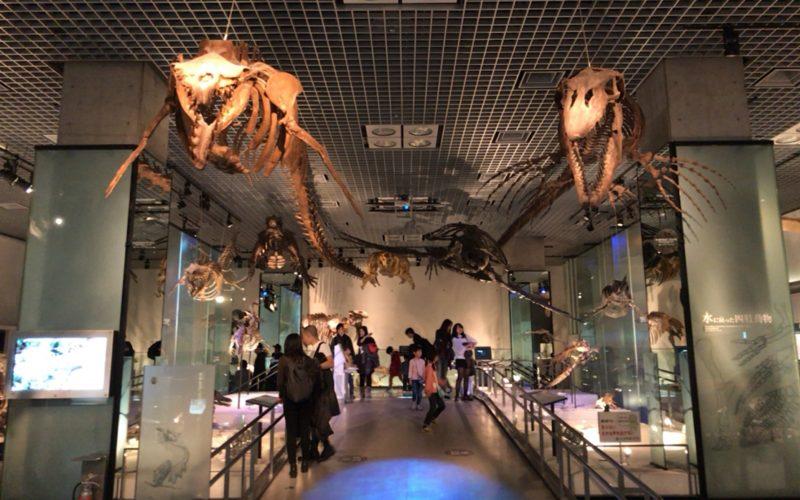 国立科学博物館の地球館B2Fの地球環境の変動と生物の進化のエリア