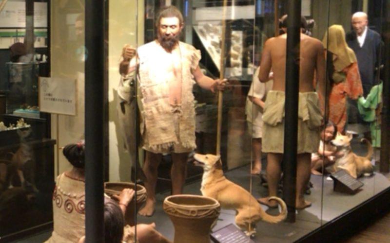 国立科学博物館の日本館2F北に展示している縄文人や弥生人の暮らし