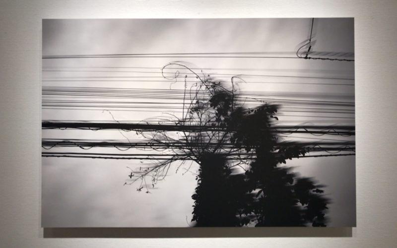 銀座プレイス 6Fのソニーイメージングギャラリーで開催された松龍 作品展 宙と墨の展示作品