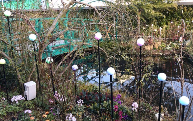西武池袋の食と緑の空中庭園にある睡蓮の庭に設置しているイルミネーション