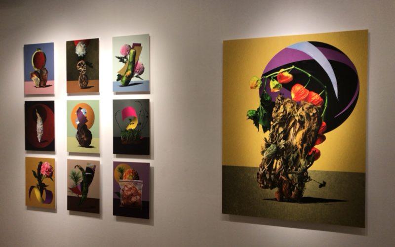 銀座プレイス6Fのソニーイメージングギャラリーで開催した「増田伸也 作品展 花札装束」の展示作品