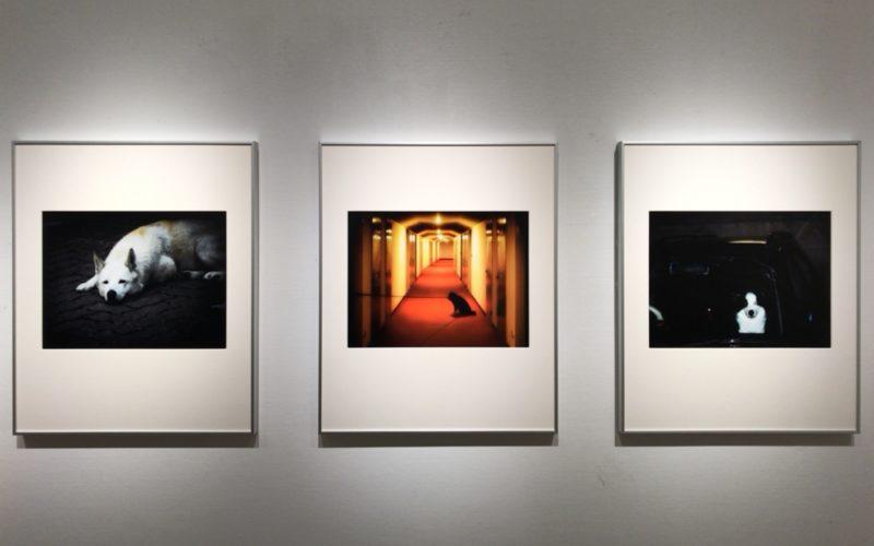 ソニーイメージングギャラリーで開催した「伏見行介 作品展 Toward the Landscape-見える時、見えない時-」の展示作品