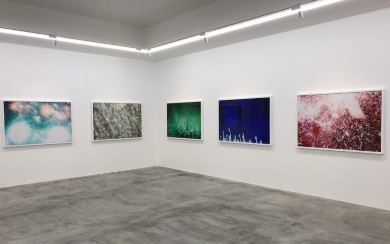 コンプレックス665 2Fの小山登美夫ギャラリーで開催した蜷川実花展 Light ofの写真作品