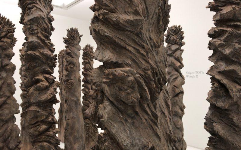 シュウゴアーツで開催していた戸谷成雄 森 Xの展示作品「森シリーズ」の10作目