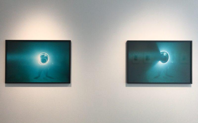 タカ・イシイギャラリーで開催した野口里佳「海底」の会場内に展示していた写真パネル