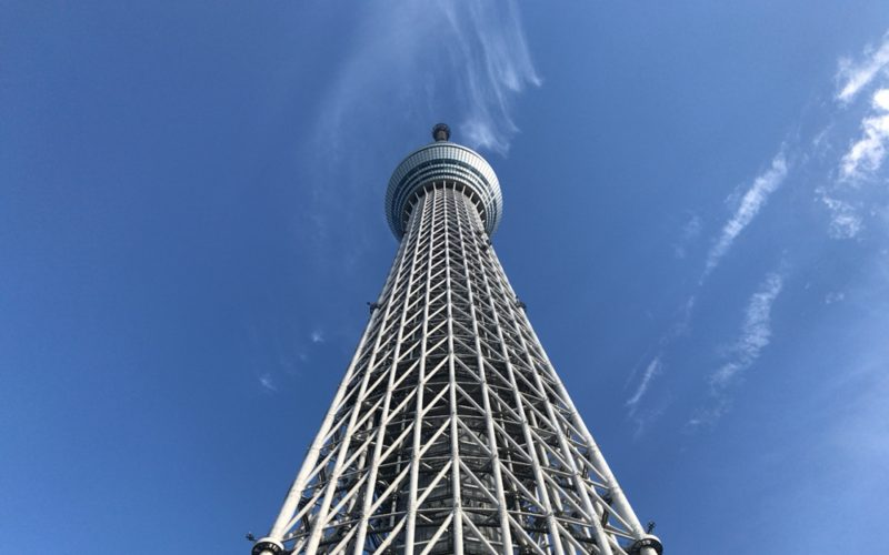 スカイアリーナから見上げた東京スカイツリー