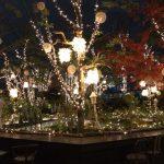 東急プラザ表参道原宿の屋上 おもはらの森に点灯したOMOHARA illumination(オモハライルミネーション)