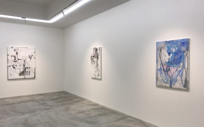 小山登美夫ギャラリーで開催したヴァルダ・カイヴァーノ展の展示作品