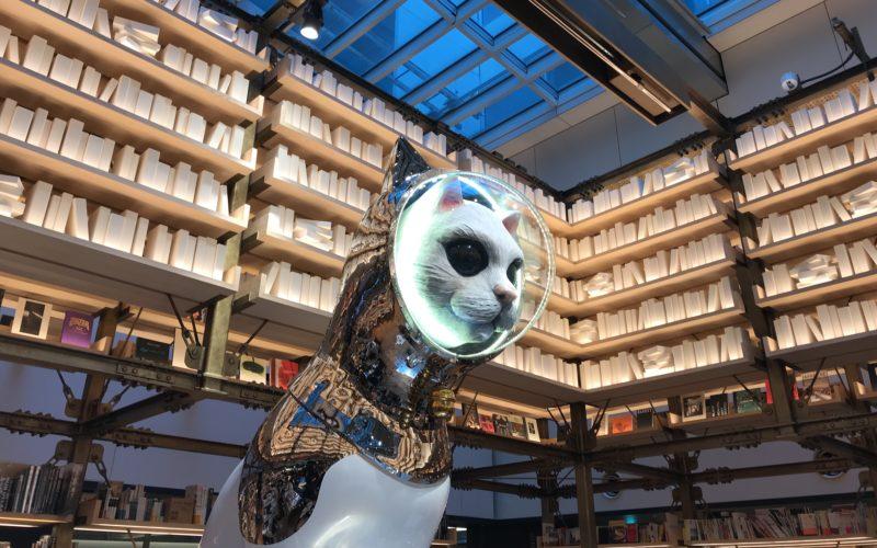 ギンザシックス6Fの銀座蔦屋書店内イベントスペースに展示していたヤノベケンジさんの作品「シップス・キャット」