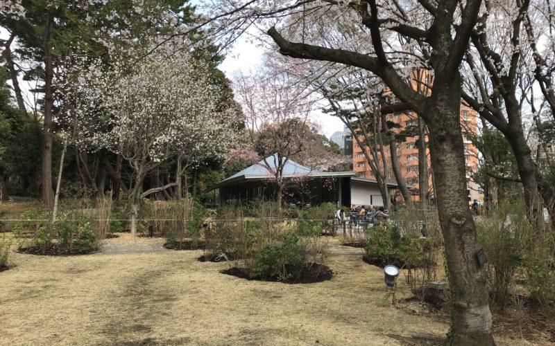 2018年3月21日(水)にリニューアルオープンした東京都庭園美術館の西洋庭園とレストラン「デュ パルク」