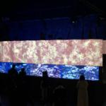 アクアパーク品川で開催した桜アクアリウム バイ ネイキッドの会場内