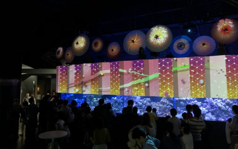 アクアパーク品川のイベントとして開催した花火アクアリウム バイ ネイキッドの傘花火