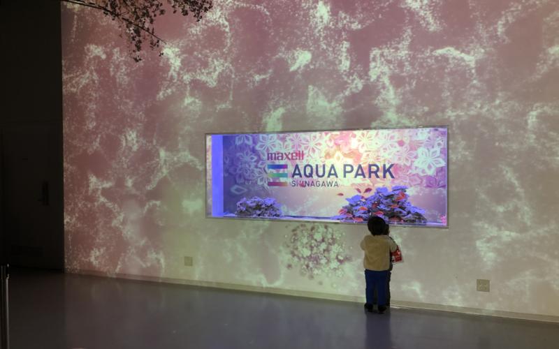 アクアパーク品川で開催した桜アクアリウム バイ ネイキッドの会場入口